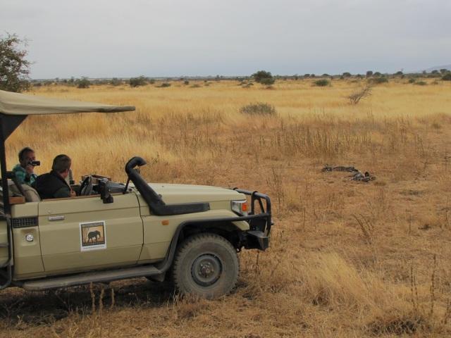 Manyara Ranch - Wild Dogs
